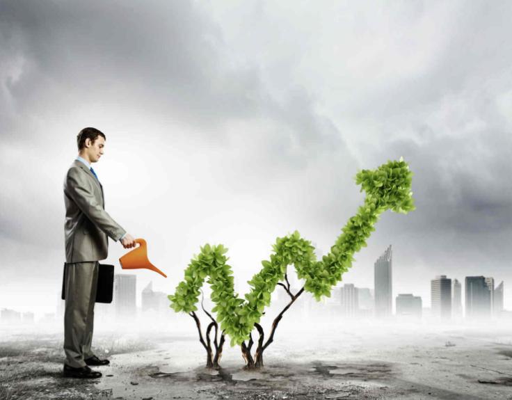 Умеренные инвестиции (от 20 до 50% в год)